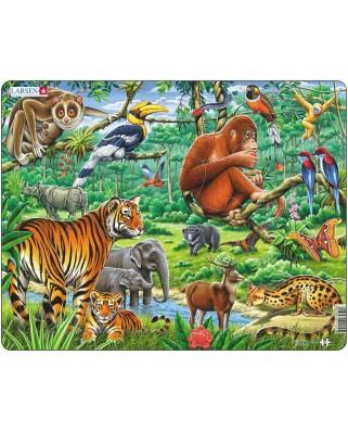 Puzzle Larsen - Jungle, 20 piese (48424)
