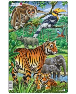 Puzzle Larsen - Jungle, 30 piese (48549)