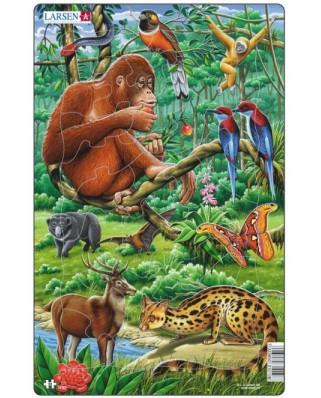 Puzzle Larsen - Jungle, 30 piese (48550)