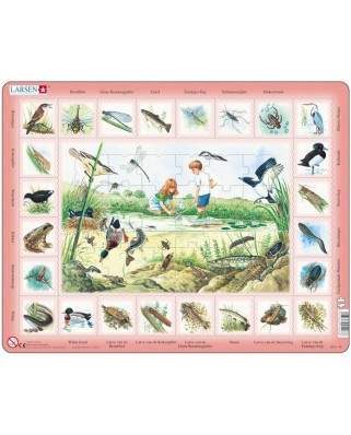 Puzzle Larsen - Pond (in Dutch), 48 piese (59535)