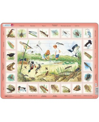 Puzzle Larsen - Pond (in Russian), 48 piese (59536)