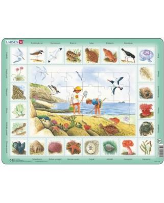 Puzzle Larsen - Seaside (in Dutch), 48 piese (63346)