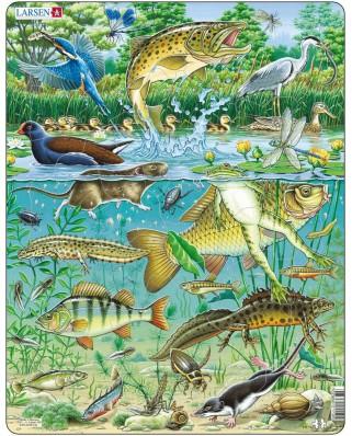 Puzzle Larsen - Tiere am Teich, 50 piese (48421)