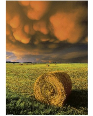 Puzzle Heye - Before the storm, 1.000 piese (40797)