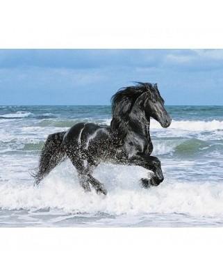 Puzzle Clementoni - Black Horse, 500 piese (1397)