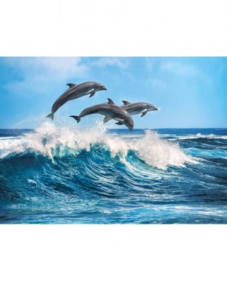 Puzzle Clementoni - Dolphins, 500 piese (62399)