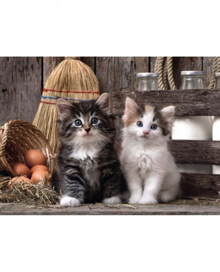 Puzzle Clementoni - Kittens, 1.000 piese (53769)