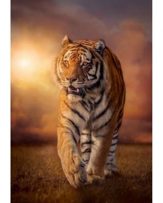 Puzzle Clementoni - Tiger, 1500 piese (62397)