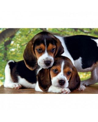 Puzzle Clementoni - Two Dogs, 500 piese (3615)