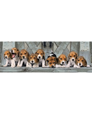 Puzzle panoramic Clementoni - Beagles, 1.000 piese (62415)