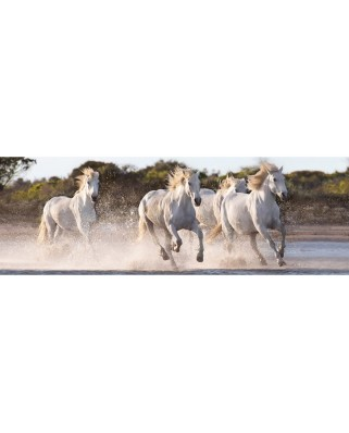 Puzzle panoramic Clementoni - Horses, 1.000 piese (62418)