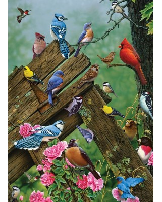 Puzzle Cobble Hill - Birds of the Forest, 1.000 piese (56146)