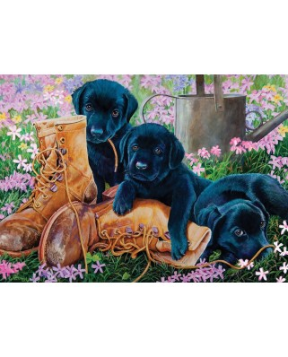 Puzzle Cobble Hill - Black Lab Puppies, 35 piese XXL (44565)