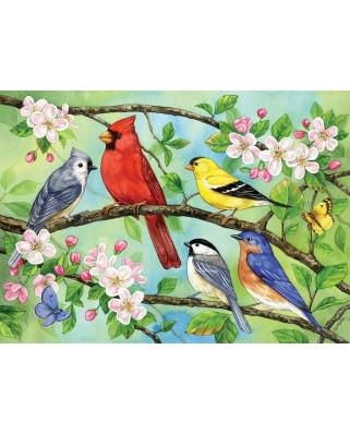 Puzzle Cobble Hill - Bloomin' Birds, 350 piese XXL (64925)
