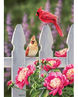 Puzzle Cobble Hill - Cardinals and Peonies, 1.000 piese (64957)