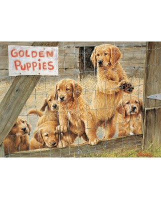 Puzzle Cobble Hill - Golden Puppies, 500 piese XXL (65017)