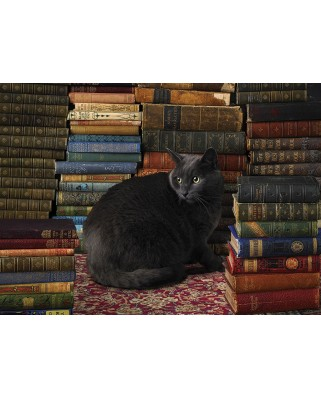 Puzzle Cobble Hill - Library Cat, 1000 piese (56095)