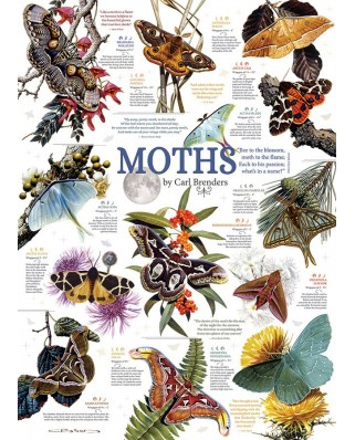 Puzzle Cobble Hill - Moth Collection, 1.000 piese (64963)