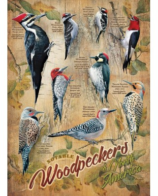 Puzzle Cobble Hill - Notable Woodpeckers, 500 piese XXL (65005)