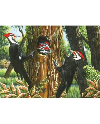 Puzzle Cobble Hill - Pileated Woodpeckers, 1.000 piese (44375)