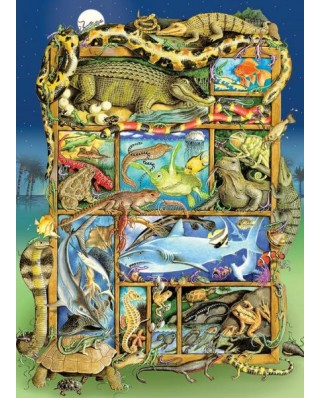 Puzzle Cobble Hill - Reptiles and Amphibians, 350 piese XXL (64932)