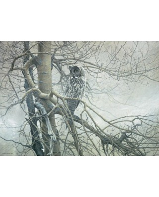 Puzzle Cobble Hill - Robert Bateman: Ghost of the North, 1000 piese (44514)