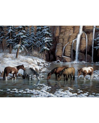 Puzzle Cobble Hill - Spirit of the Rockies, 1000 piese (64996)