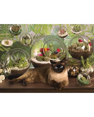 Puzzle Cobble Hill - Terrarium Cat, 1000 piese (65028)