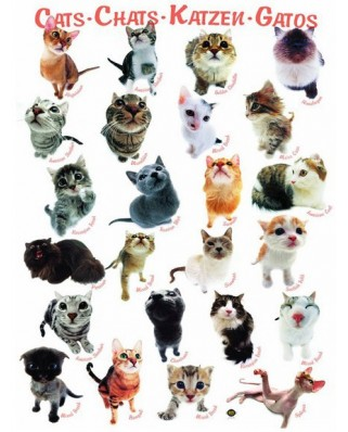 Puzzle Eurographics - Classic Cats, 1.000 piese (42319)