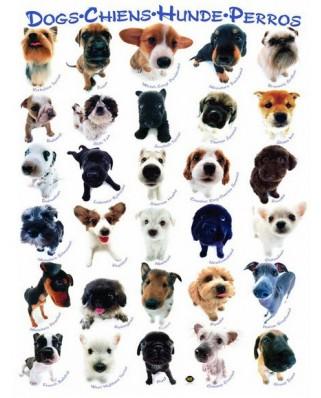 Puzzle Eurographics - Klassische Hundenrassen, 1.000 piese (42318)