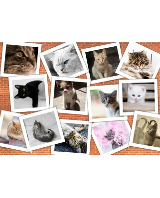 Puzzle Grafika - Cats, 1.500 piese (59641)
