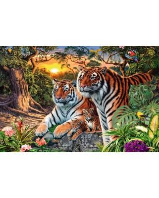 Puzzle Ravensburger - Tigri, 3.000 piese (17072)