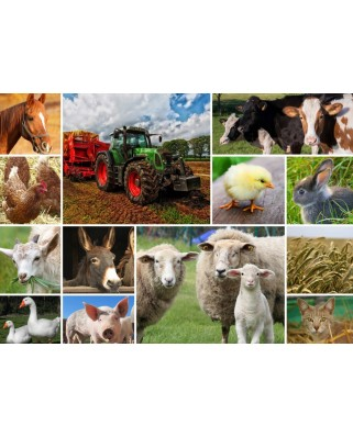 Puzzle Grafika - Collage - Farmyard Animals, 2.000 piese (58035)