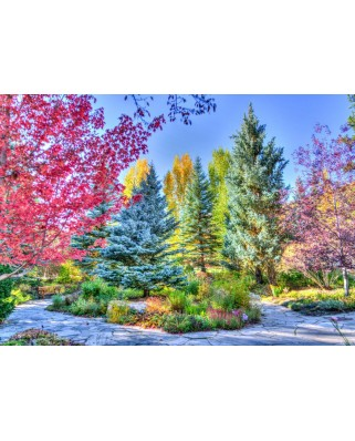 Puzzle Grafika - Colorful Forest, Colorado, USA, 1.500 piese (63483)