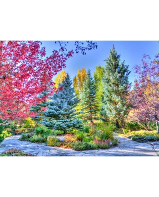 Puzzle Grafika - Colorful Forest, Colorado, USA, 300 piese (63452)