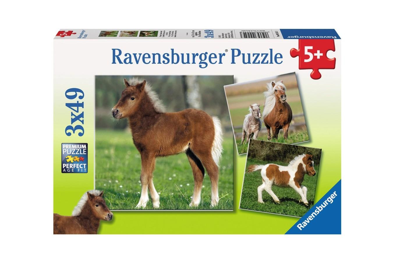 Puzzle Ravensburger - Ponei, 3x49 piese (09254)