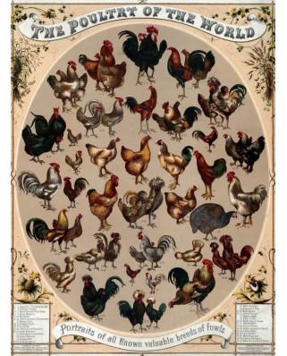 Puzzle Grafika - The Poultry of the World, 2.000 piese (45571)