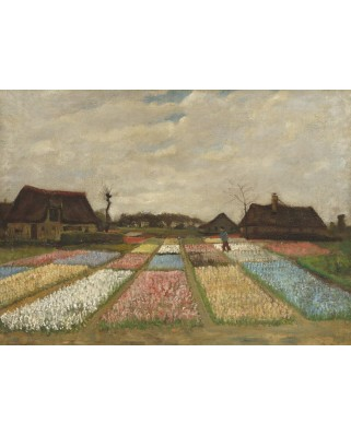 Puzzle Grafika - Vincent Van Gogh: Flower Beds in Holland, 1883, 300 piese (55147)
