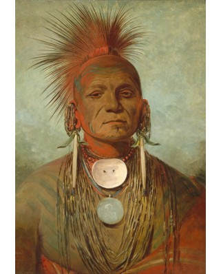 Puzzle Grafika Kids - George Catlin: See-non-ty-a, an Iowa Medicine Man, 1844-1845, 100 piese (58870)