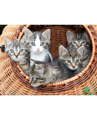 Puzzle Grafika Kids - Kittens in a Basket, 300 piese (53033)