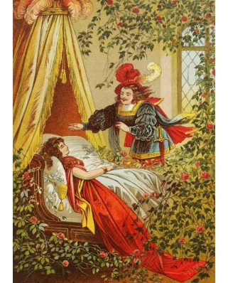 Puzzle magnetic Grafika Kids - Carl Offterdinger: Sleeping Beauty, illustration, 24 piese (49697)