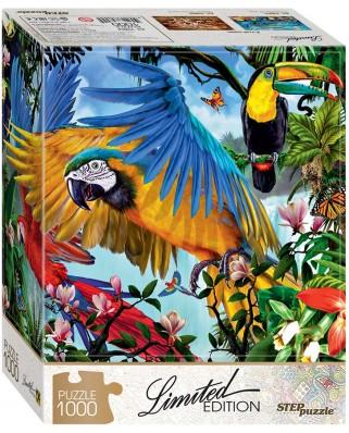 Puzzle Step - Parrots, 1.000 piese (61491)