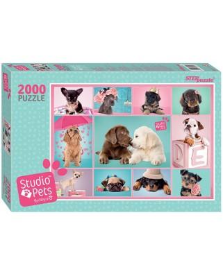 Puzzle Step - Studio Pets, 2.000 piese (63768)