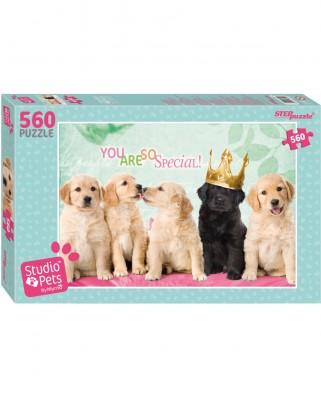 Puzzle Step - Studio Pets, 560 piese (63777)
