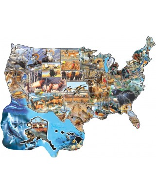 Puzzle contur SunsOut - Cynthie Fisher: Wild America, 600 piese (64406)