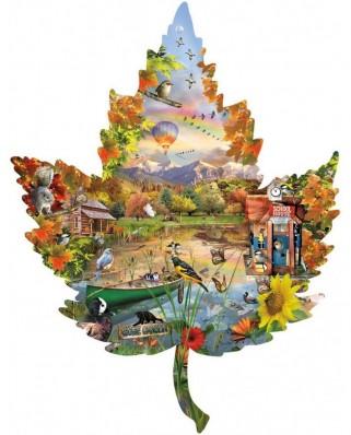 Puzzle contur SunsOut - Lori Schory: Autumn Shoreline, 1.000 piese (45417)
