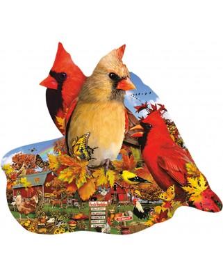 Puzzle contur SunsOut - Lori Schory: Fall Cardinals, 800 piese (64441)