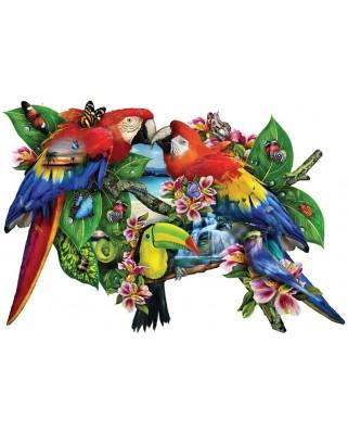 Puzzle contur SunsOut - Lori Schory: Parrots in Paradise, 1.000 piese (64375)