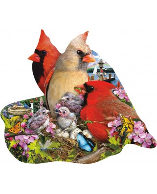 Puzzle contur SunsOut - Lori Schory: Spring Cardinals, 800 piese (64438)