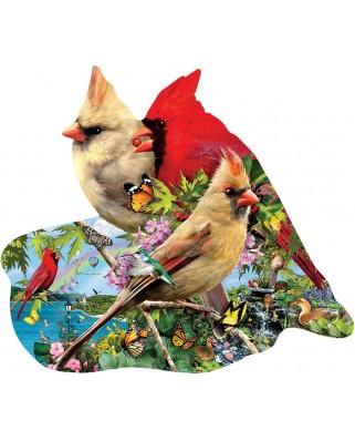 Puzzle contur SunsOut - Lori Schory: Summer Cardinals, 800 piese (64440)